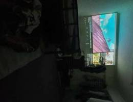 Projector 1080p native resolution