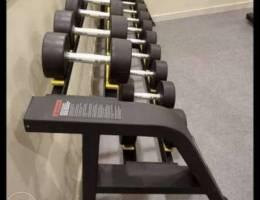 Dumbbells set with rack