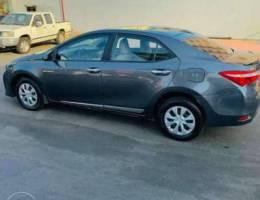 Toyota Corrolla 2016 buy drive